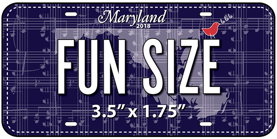 Zebra Patterns™ - 2018 STINKINCUTE - FUN SIZE Fabric Plate™ (shipped)